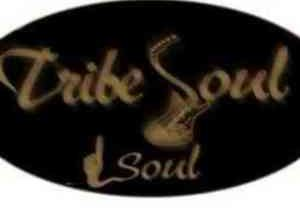 Photo of Download MP3 : Tribesoul – Jungle