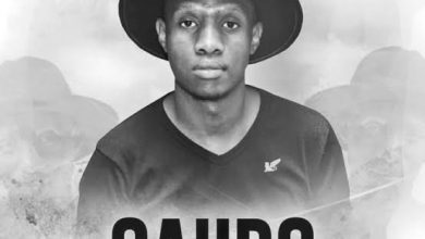 Photo of Download Mp3: Caiiro – 911