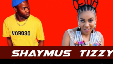 Photo of Shaymus Tizzy – Sho Madjozi (Mp3 Download)
