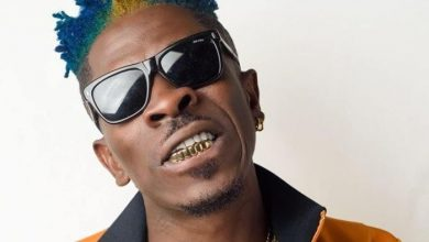 Photo of Shatta Wale – Apple Juice