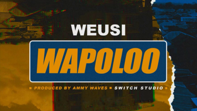 Photo of Weusi – Wapoloo