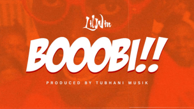 Photo of Lil Win – Boobi