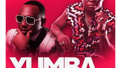 Photo of Darassa – Yumba Ft. Harmonize