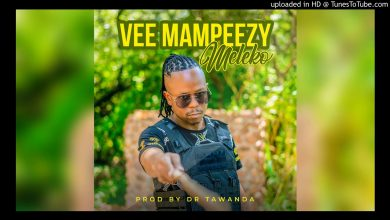 Photo of Vee Mampeezy – Meleko (Prod by Dr Tawanda)