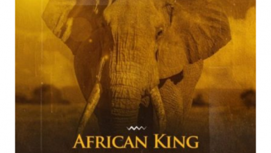 Photo of 2Point – African Kings ft. Stormrise