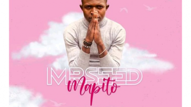 Photo of MR SEED – MAPITO