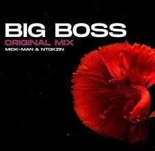 Photo of Mick-Man & Ntokzin – Big Boss
