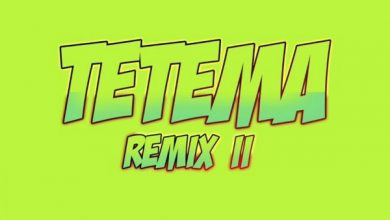 Photo of Rayvanny – Tetema (Remix) ft. Pitbull, Mohombi, Jeon, Diamond Platnumz