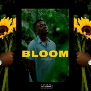 Sipho The Gift Bloom