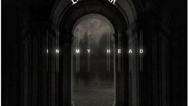 Photo of Larry Gaaga – In My Head ft Patoranking