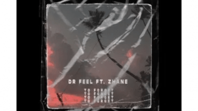 Photo of Dr Feel – To Forget Ft. Zhane