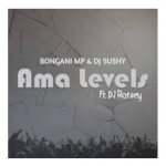 Bongani Mp & DJ Sushy Ama Levels