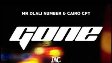 Photo of Mr Dlali Number & Cairo CPT – Gone