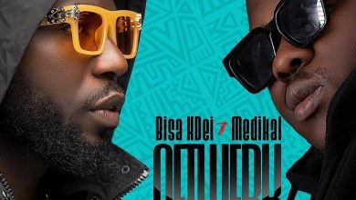 Photo of Bisa Kdei – Netwerk Ft. Medikal