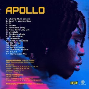 Fireboy Apollo Album