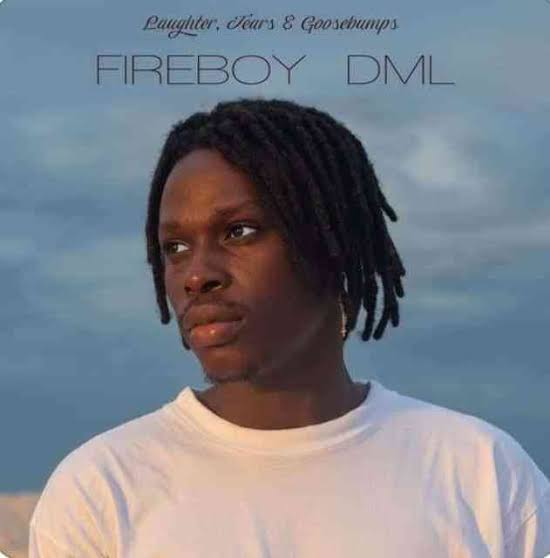 FireBoy Laughter Tears & Goosebumps Album Download