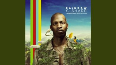Photo of C-Sharp, Mthokozisi Ndaba, Family First & DJ Sox – Rainbow