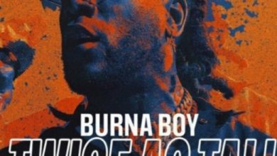 Photo of Burna Boy – Monsters You Made