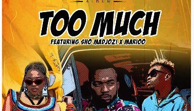 Photo of Rj The Dj – Too Much Ft Shoo Madjozi & Marioo