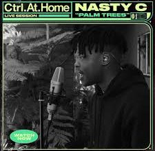 Photo of Nasty C – Palm Trees (Live Session) Vevo Ctrl.At.Home