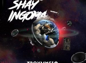 Photo of Troymusiq – Shay'ingoma Ft. Dj Jim Mastershine