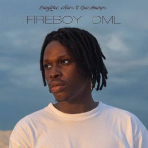 Fireboy Dml Net Worth In 2021