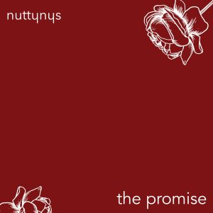 Photo of Nutty Nys – The Promise