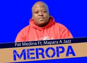 Photo of Pat Medina – Meropa Ft. Mapara a Jazz (Original)