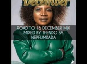 Photo of Thendo Sa, Master Kg, Makhadzi, DJ Call Me, Mvzzle – Road To 16 December Mix
