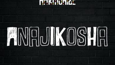 Photo of Harmonize – Anajikosha