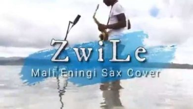 Photo of Big Zulu – Mali Eningi Ft. Riky Rick & Intaba Yase Dubai (Zwile Sax Cover)