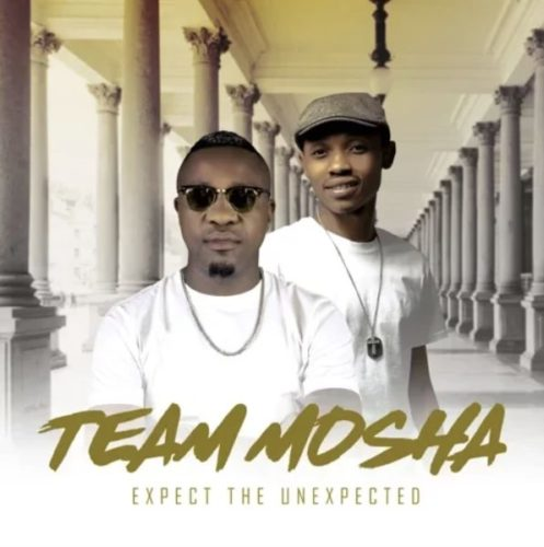 Photo of Team Mosha – Namini Ft. Shimza Da Muzik
