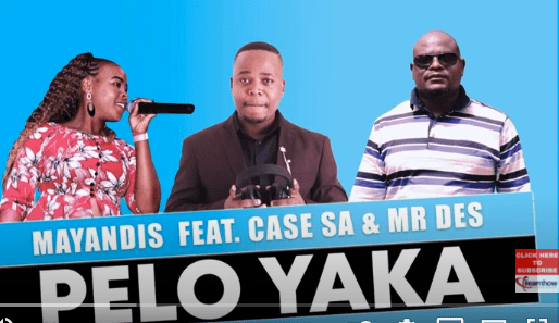 Photo of Mayandis – Pelo Yaka Ft. Case SA & Mr Des